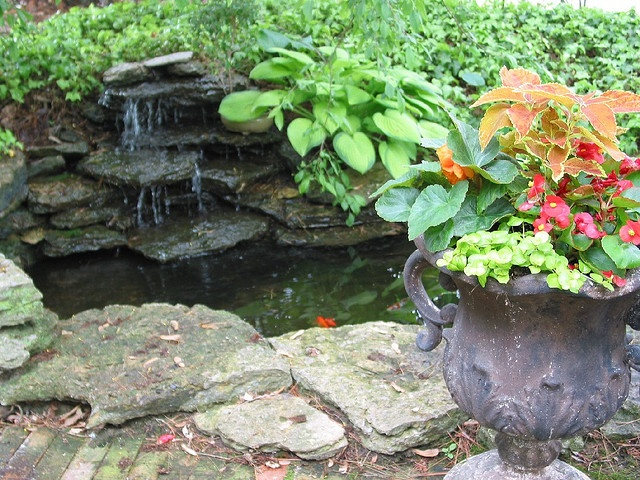 Patio Pond And Small Waterfall Ponds Pinterest