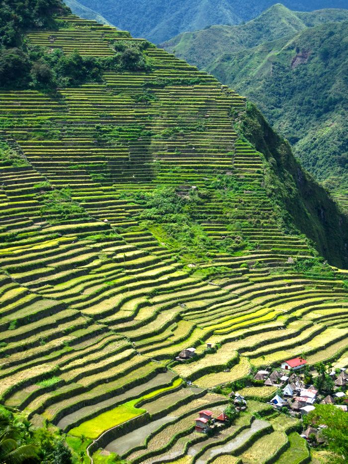 Rice terraces batad philippines gardens beaches vs for What are terraces