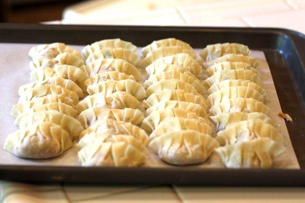 Gyoza Recipe (Japanese Pan-Fried Dumplings) from La Fuji Mama in ...