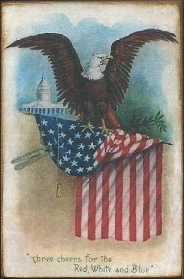 4th of july eagle pictures