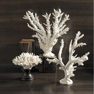 White Coral Home Decor Coastal Living Home Accent Pieces Ideas