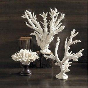 White Coral Home Decor Coastal Living Home Accent Pieces Ideas