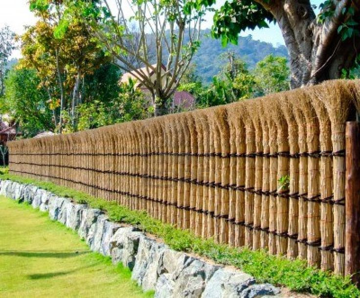Natural fence of japanese house in summer time stock photo for Natural privacy fence
