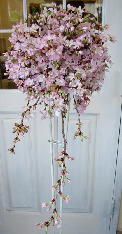 cherry blossom wedding bouquets pinterest