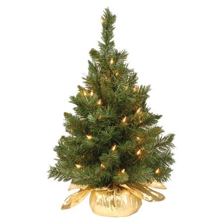 Christmas Trees Pre Lit
