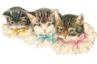 Vintage cats scrap