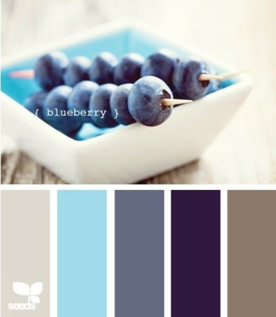 blueberry tones color combo color me