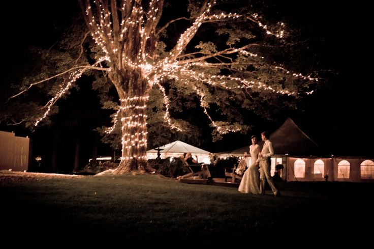 """A little """"Lord of the Rings"""" inspiration.  I always loved the idea of having a """"Party Tree"""" at my wedding."""