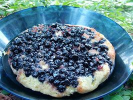 Blueberry-orange tea cake (Outback oven) | Camp food & cooking | Pint ...