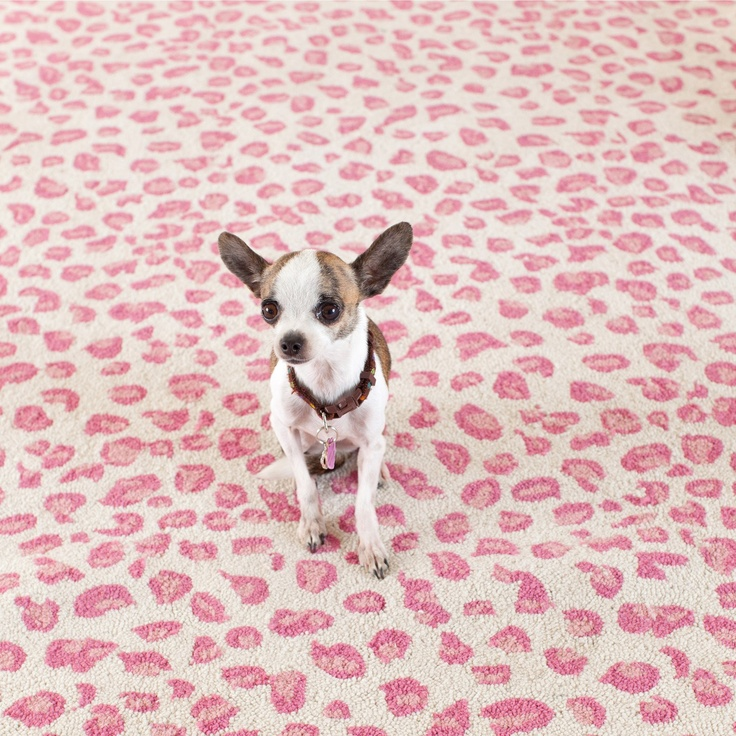 Dash & Albert Leopard Pink Wool Rug