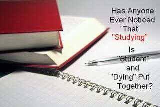 studies homework help