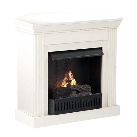 gel fuel fireplace rooms pinterest
