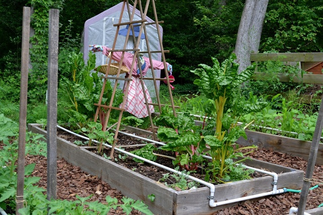 Raised Garden Irrigation Ideas Youtube Photograph Irrigati