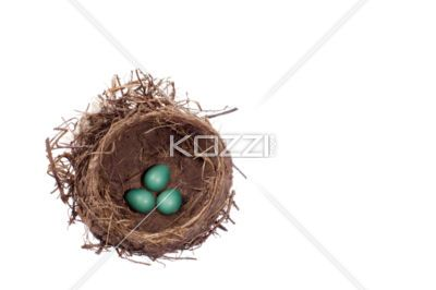painted eggs in a nest - Hand painted eggs inside a bird nest.