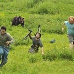 bear chases photographers sweet and funny animal photos pinterest