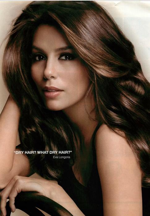 Hair Pictures : eva longoria hair/love this hair color hairr Pinterest