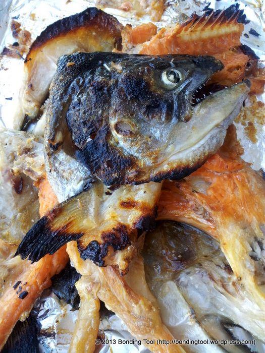 9King Salmon Kama Shioyaki©BondingTool | All things Pacific | Pintere ...