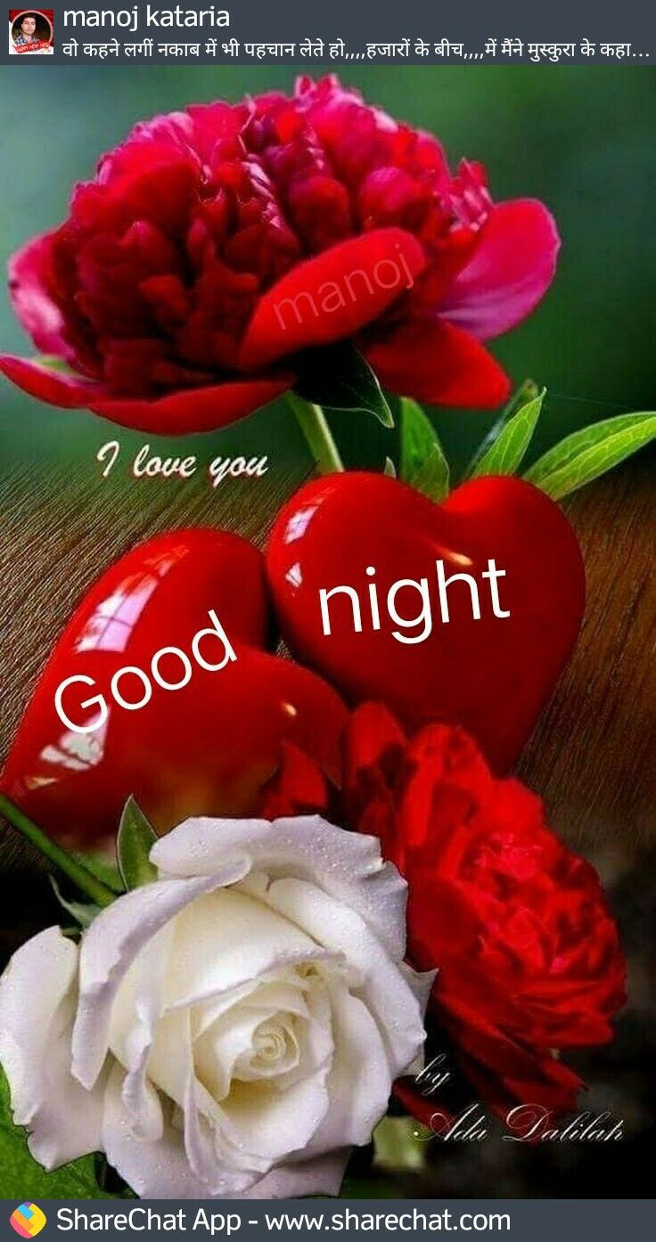 Good Night Love Flowers Pictures | Babangrichie org
