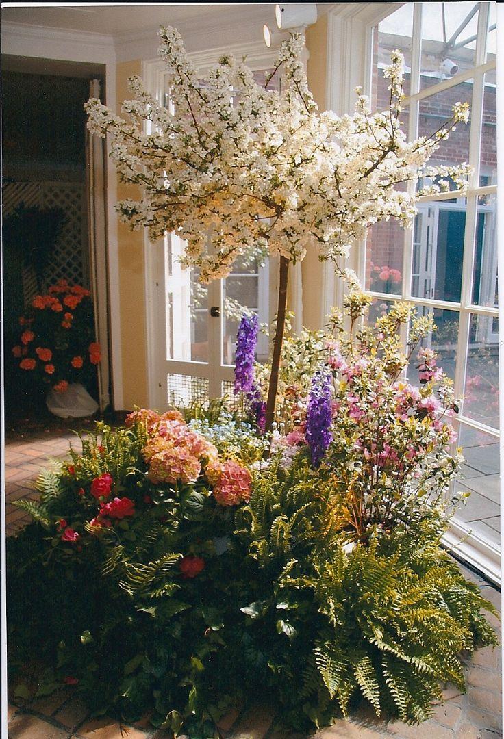 Small Indoor Garden Gardens Pinterest