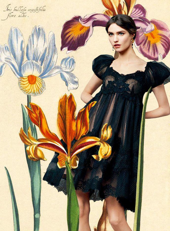 Посмотрите из День DolceGabbana весна лето 2014 женская Кружева приложений Романтический Plumeti платье
