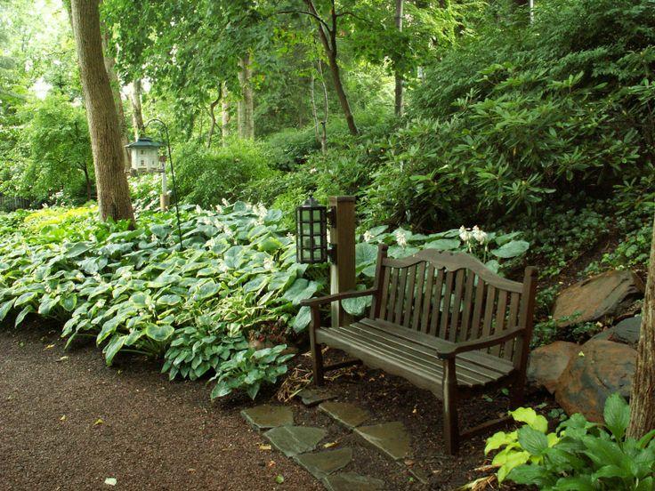 Shade garden bench shade garden pinterest for Woodland shade garden designs