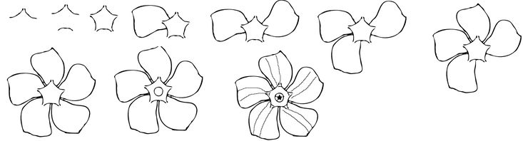 How to draw a periwinkle flower easy free step by step for Easy flower drawing tutorials
