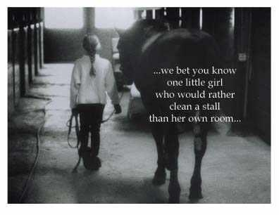 Horse Pictures With Quotes Horse quotes - google search