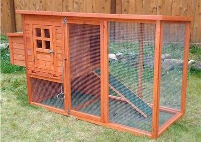 Lim yang easy to chickens coop for sale for Homemade chicken coops for sale