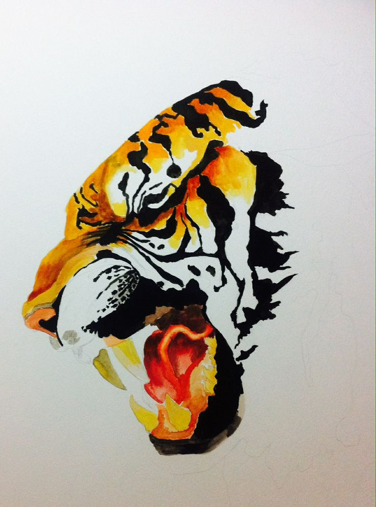 watercolor tiger by kait samuels