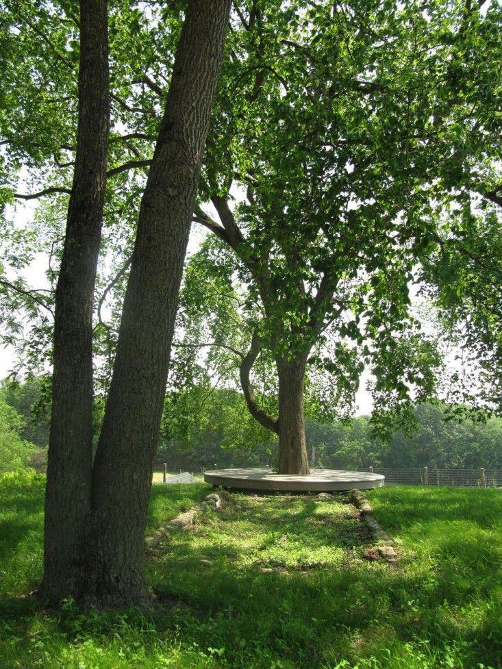 Circular tree bench.  Sandwich St - Grounds  Pinterest