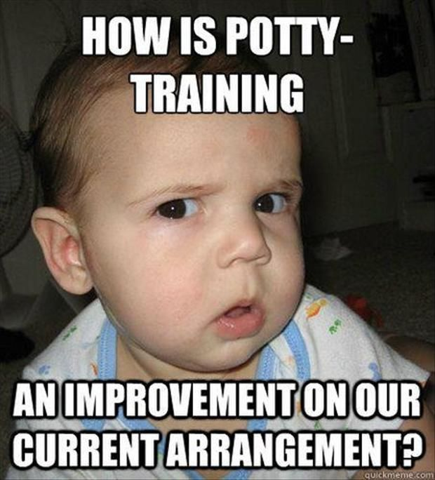 Funny Pictures How is potty training - funny picture of the day