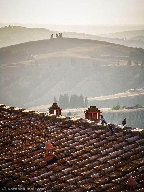 livornot: la mia Toscana