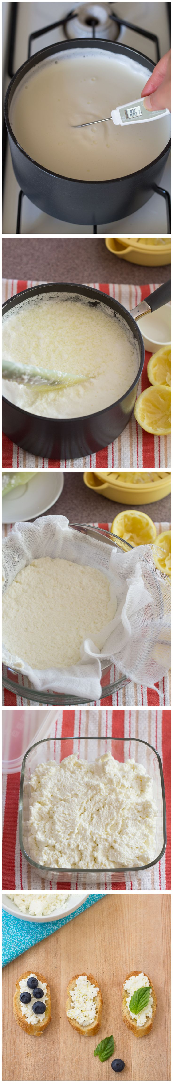 Rich homemade ricotta cheese makes a wonderful spread for crostini and ...