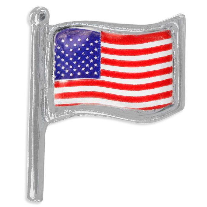 flag flying on veteran's day