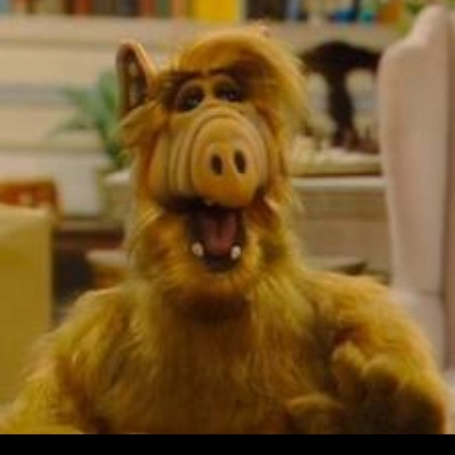 Alf the alien awesome aliens ufo s pinterest