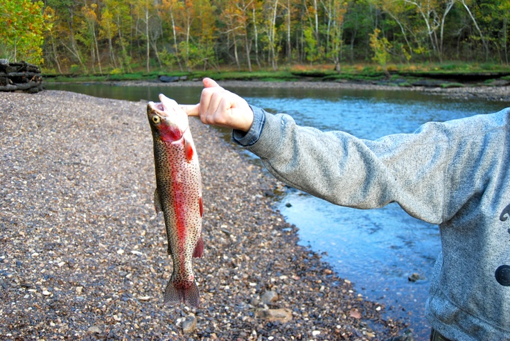Great trout fishing in the white river midway usa trout for White river fishing