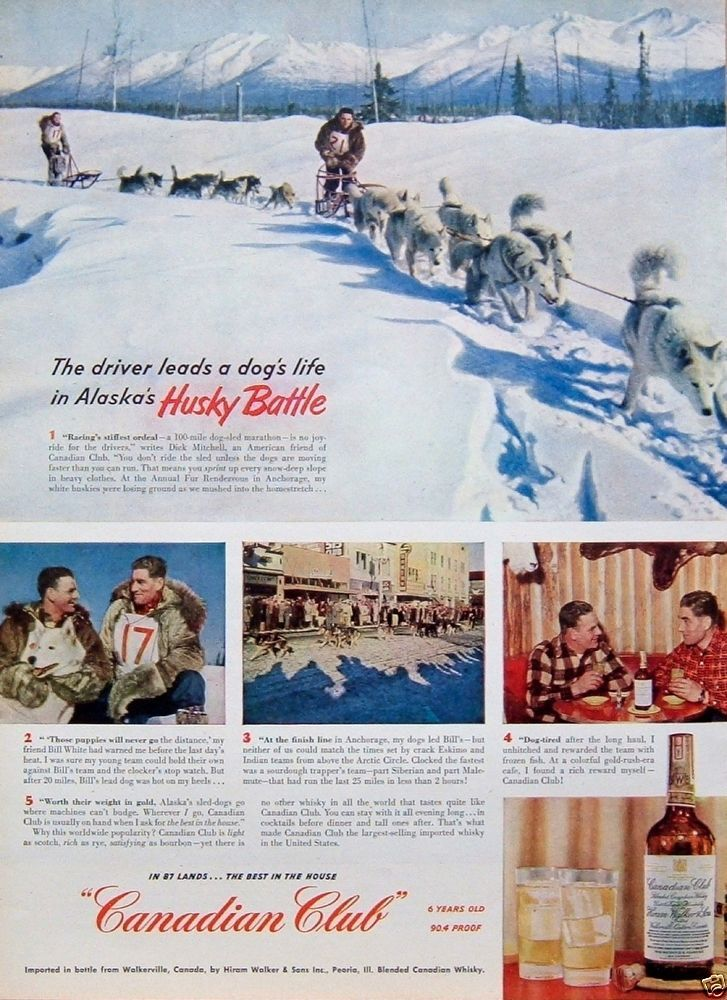 1951 VINTAGE AD Canadian Club Whiskey Alaska Husky Battle Dog Sled Marathon Race