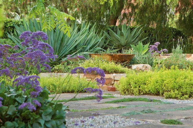 Drought tolerant garden living loving pinterest for Drought resistant gardens