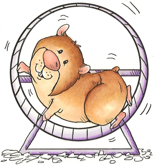 Hamster In Wheel Clipart Images & Pictures - Becuo