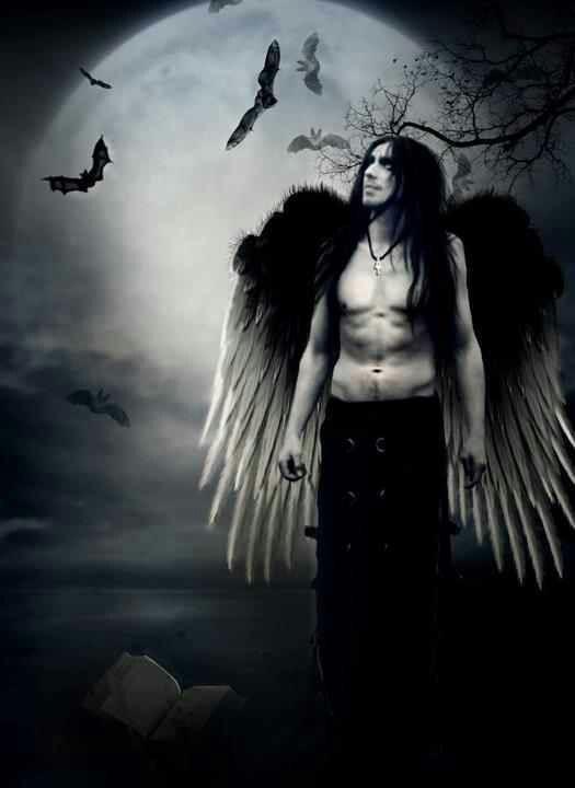 Via angel kelly