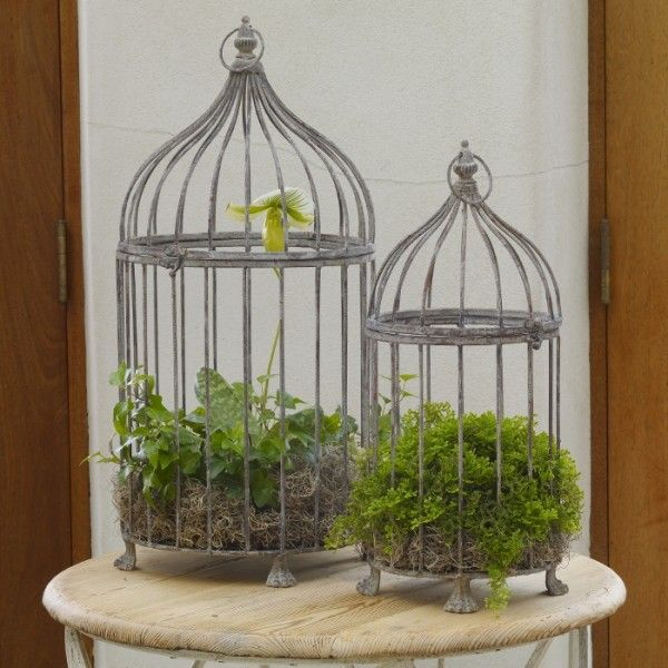 Aged Metal Bird Cages For Spring Decor Decor Ideas