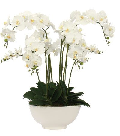 White Orchid Faux Flower Arrangement For The Home