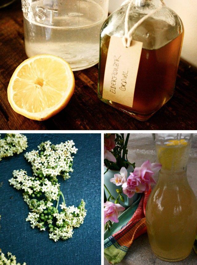 Elderflower 2 cordial | ~Healing Plants and Herbs | Pinterest