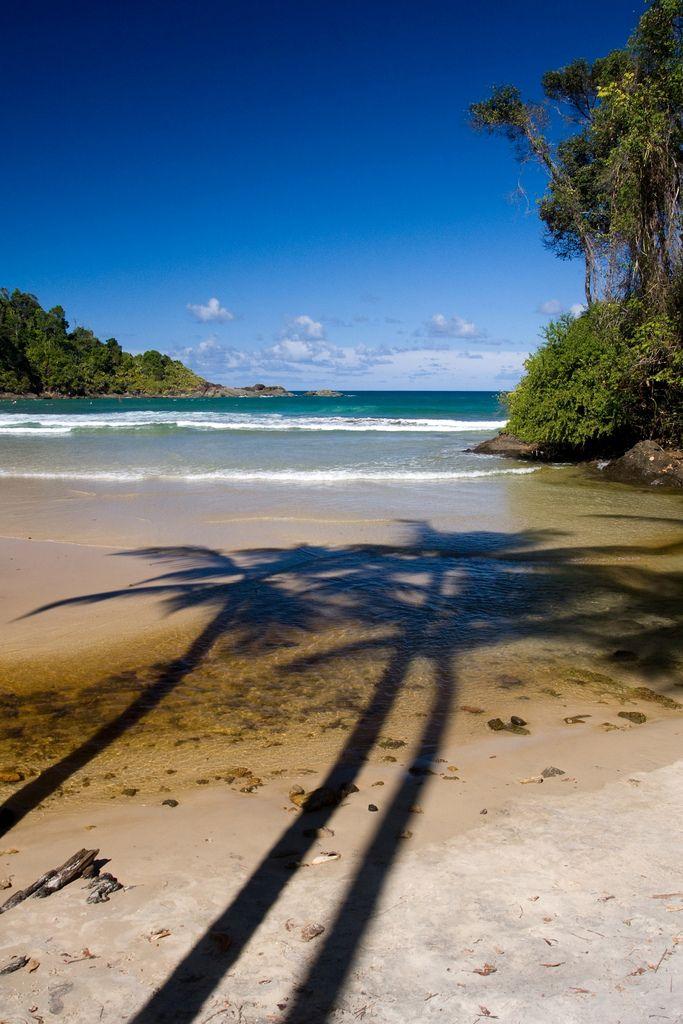 Palm tree shadows. Engenhoca Beach, Itacare, Brazil.