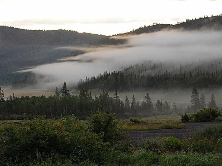 Fishlake national forest utah forest rachel pinterest for Fish lake utah