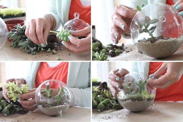 Crea tu propio terrario, encuentra más manualidades paso a paso en http://www.1001consejos.com/