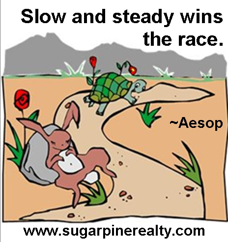 """essay on proverb - slow and steady wins the race """"slow and steady wins the race"""" – meaning and explanation the famous saying, 'slow and steady wins the race this proverb states that a person who is."""