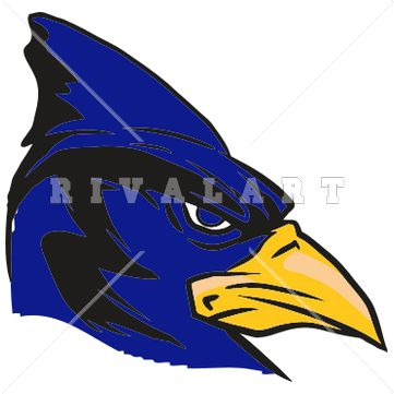 Clipart Image Of Blue Jay Graphic Color | Mascots | Pinterest