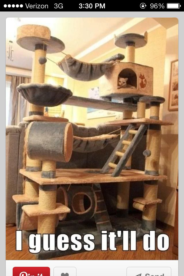 Cat castle cool cat furniture pinterest for Castle cat tower