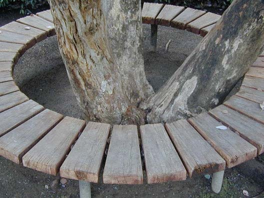 Circular tree bench  Garden Decor and Design Ideas  Pinterest